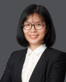 Chuyen Hong Huu Le